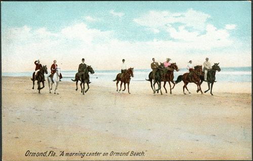 Horses on Ormond Beach